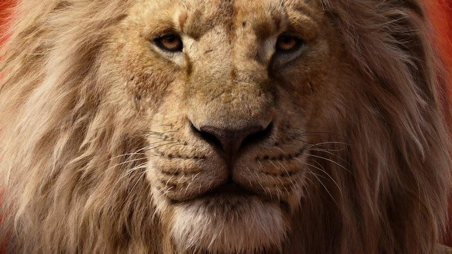 The Lion King 2019 Mufasa 4k Wallpaper 17