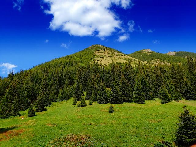 Widoki z Bobrowieckiej Przełęczy - Bobrowiec