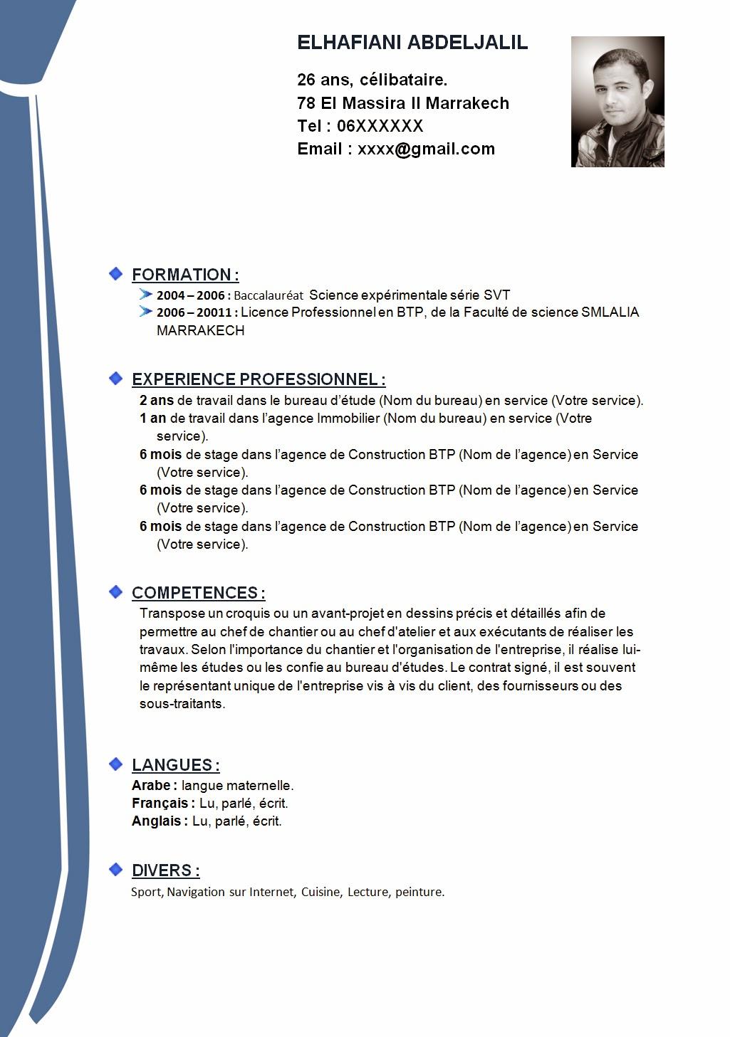 Curriculum Vitae Format Curriculum Vitae Resume For Chris