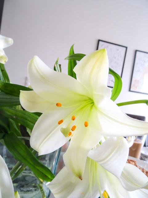 Valkoisia kukkia | Valkoisia liljoja