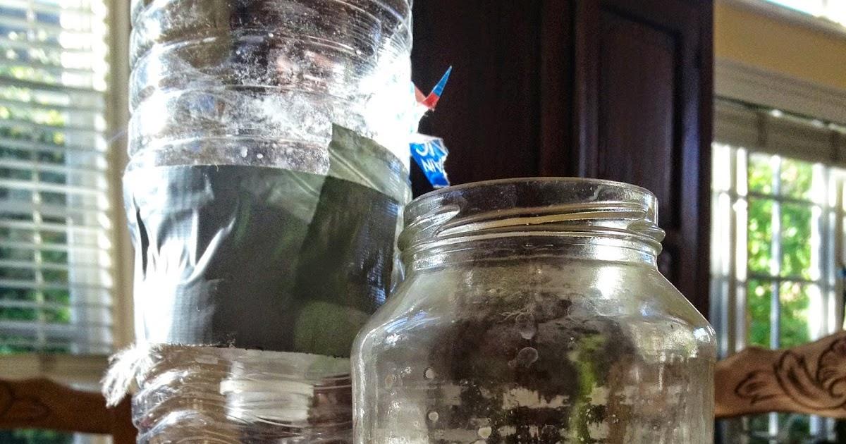 Mortgage Loans Caroline Gerardo Home Mosquito Trap Free