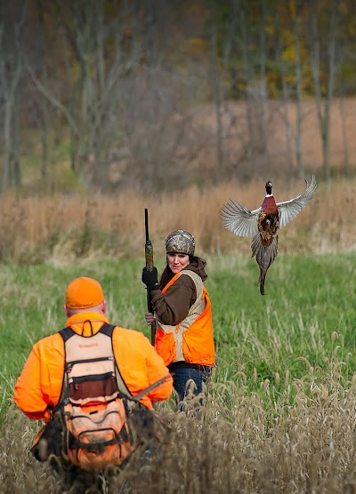 Showcasing the Michigan DNR: Women take to thrill, challenge of pheasant hunting