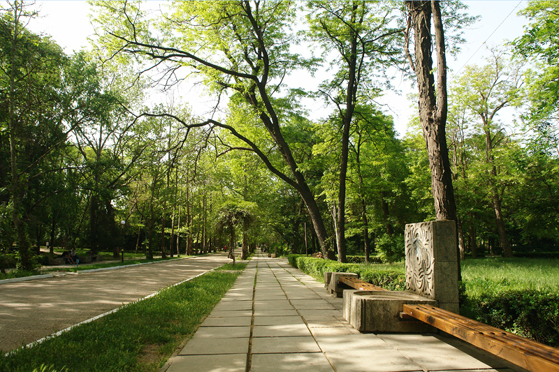 Парк в санатории им. Бурденко, Саки