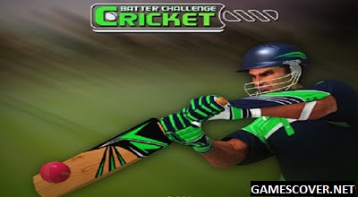 Play Cricket Batter Challenge Game