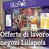 Lillapois Lavora Con Noi (Posizioni Aperte, Requisiti, Inviare Curriculum)
