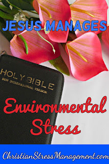 Jesus manages environmental stress