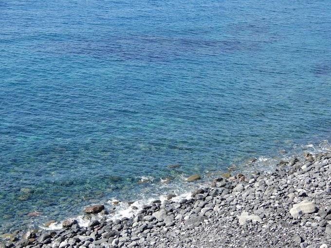 大島の海を見て元気をチャージしたという日記