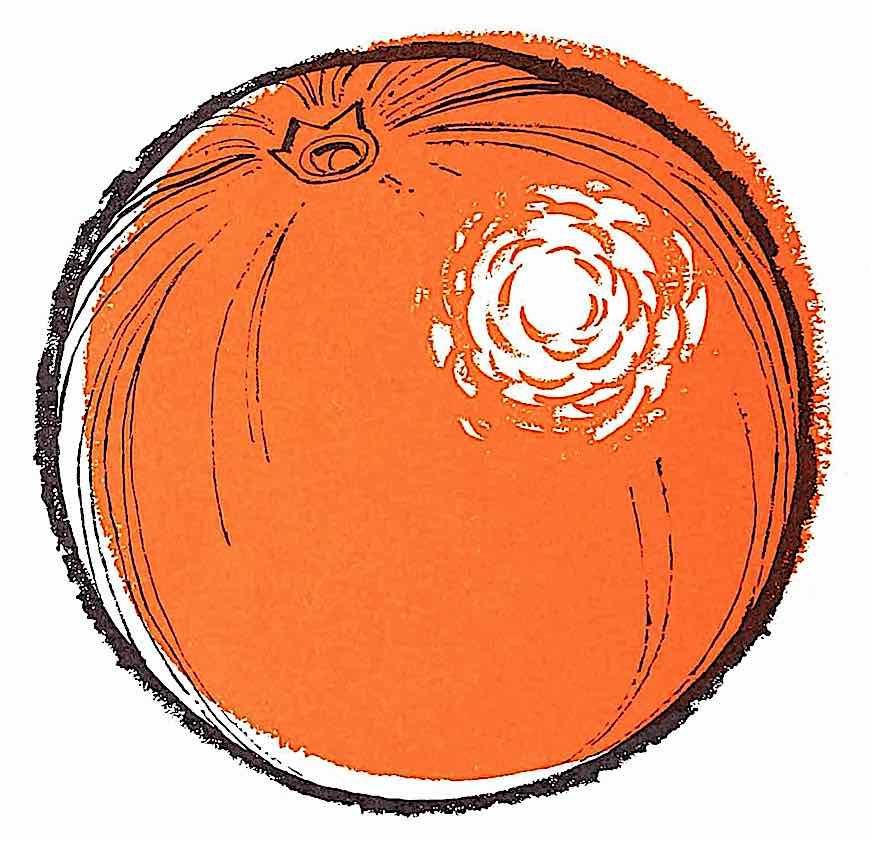 a 1959 illustration of an orange with intentionally off-position color for looseness