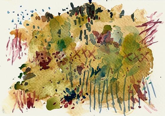 Wilder Garten auf dem Land