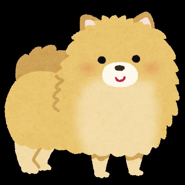 ポメラニアンのイラスト(犬)