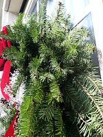 Wreaths of Maine