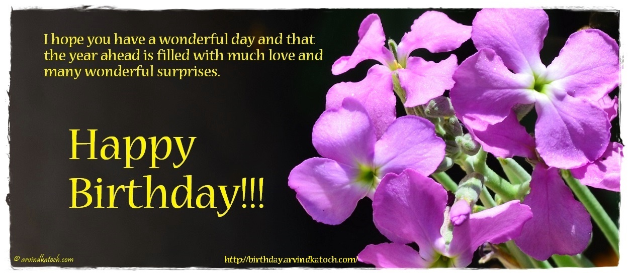flower birthday card i hope you have a wonderful day and that the year ahead
