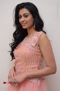 Actress Neha Hinge Stills in Pink Long Dress at Srivalli Teaser Launch  0004.JPG