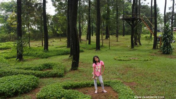 Hunting Photo Di Objek Wisata Rumah Pohon Kabupaten Kuningan Jawa