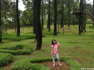 Hunting Photo di Objek Wisata Rumah Pohon Kabupaten Kuningan Jawa Barat