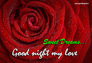 my love good night sweet dreams rose greetings
