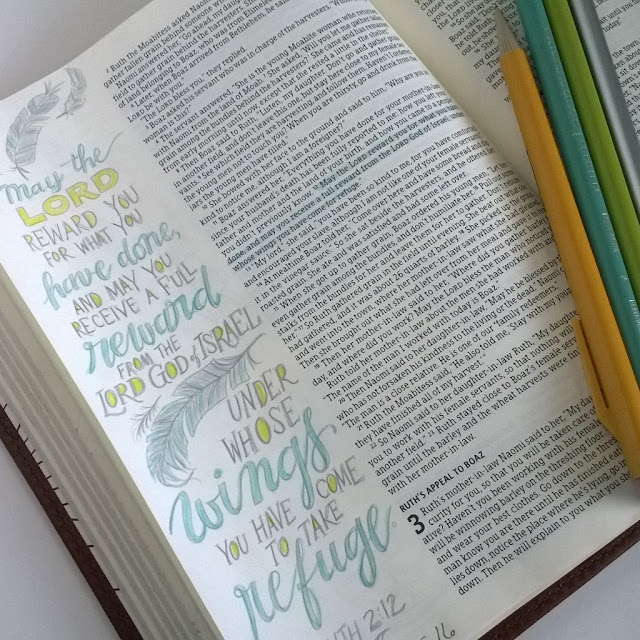 HCSB Illustrator's Notetaking Bible from B&H Publishers