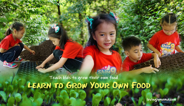 teach kids to grow their own food - Bright Kids Preschool - field trip - homeschooling - Bacolod preschool - Bacolod blogger - Bacolod mommy blogger - Negros Farmers Weekend Market