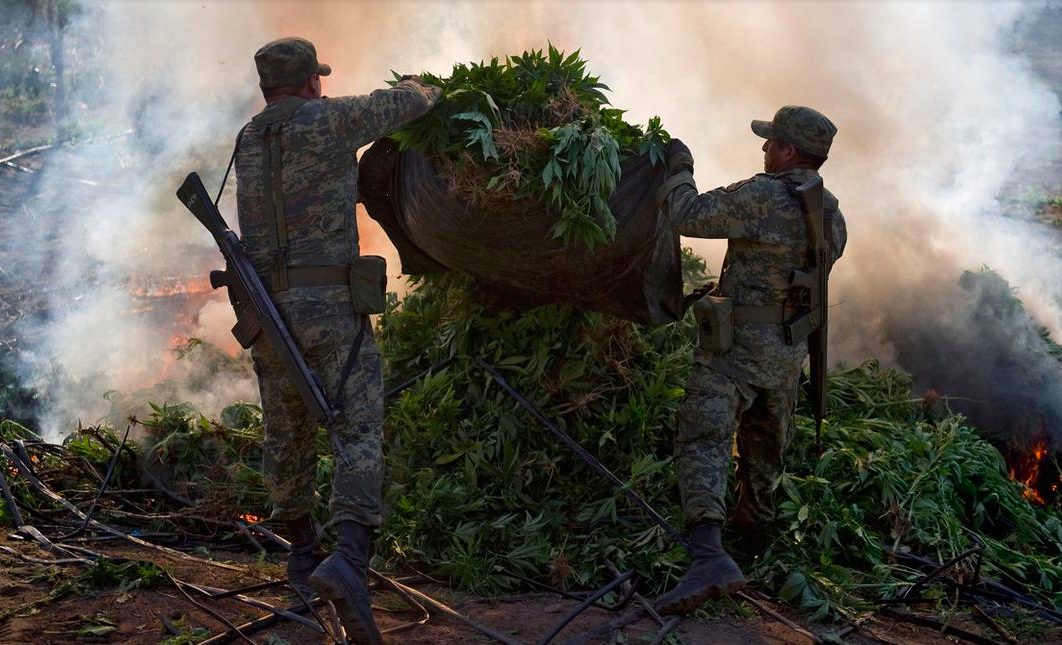 Six Reasons the Drug War is Disastrous for Latin America ...