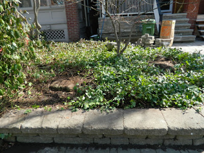 Riverdale Spring Cleanup Front Raised Bed After by Paul Jung Gardening Services--a Toronto Organic Gardening Company