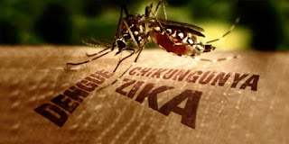 Gejala Virus Zika