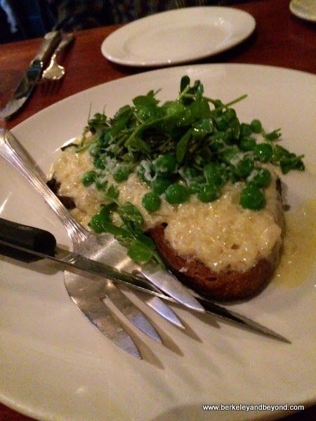 rarebit at The Growlers' Arms in Oakland, California