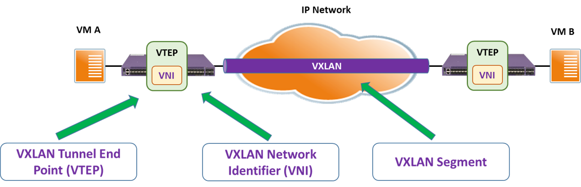Extreme Switch - How to Configure VXLAN in EXOS | AnalysisMan