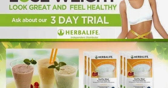 Herbalife Independent Distributor – Peg Dalessandro