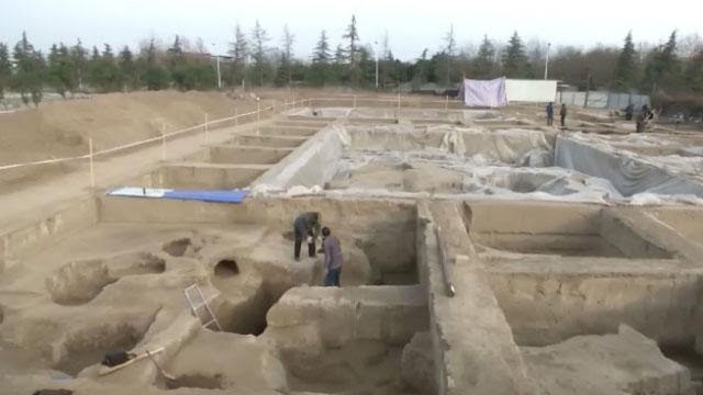 2,800 year old wheat grains discovered in north China