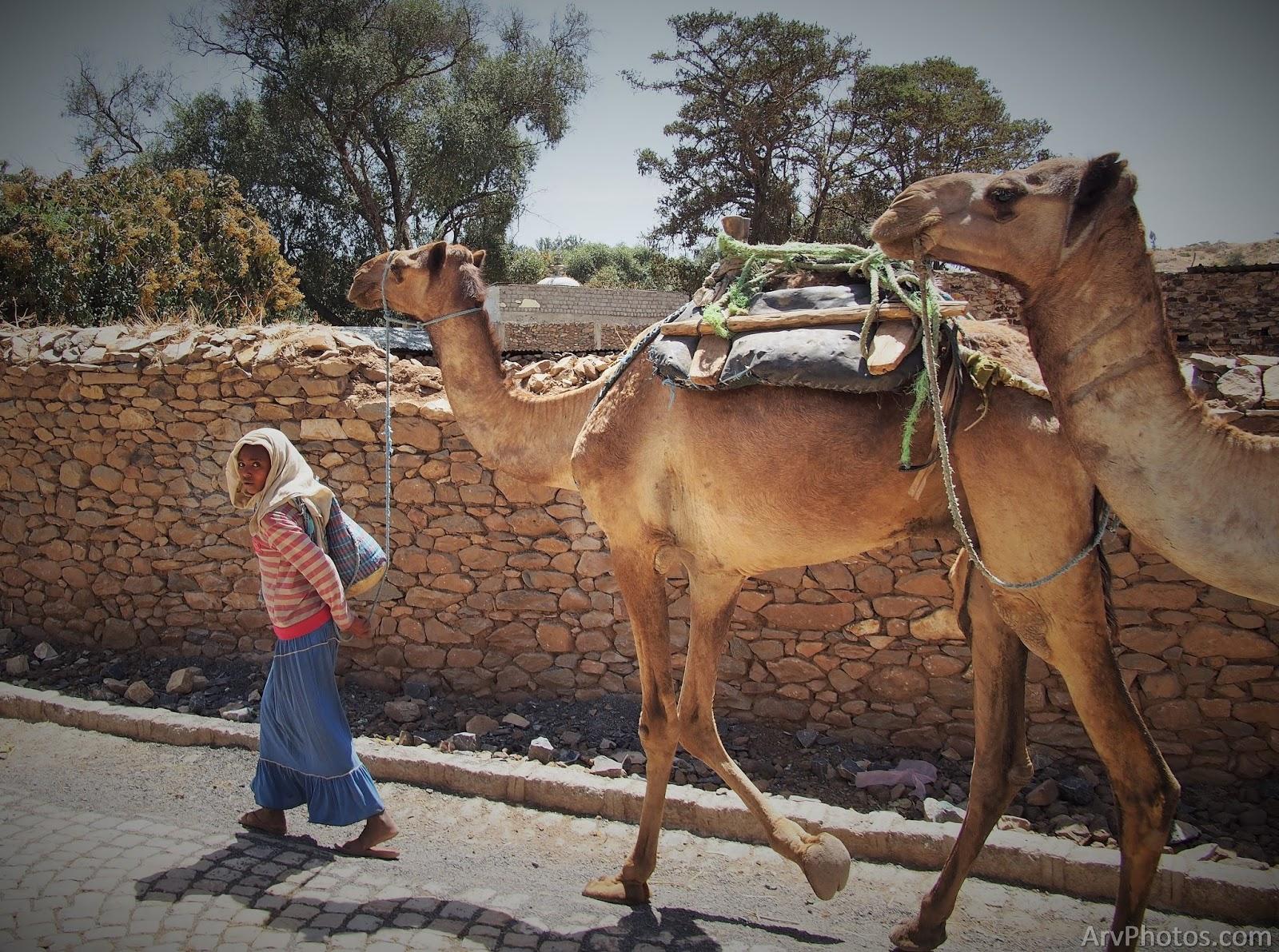 streets of Axum