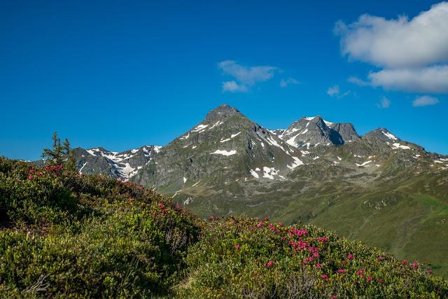 Panoramaweg Gantakopf  Wandern im Montafon 08