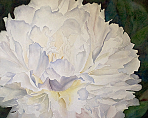 White Peony Watercolor Painting – Update 5