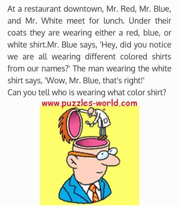 Red Blue and White Color Shirt Puzzle