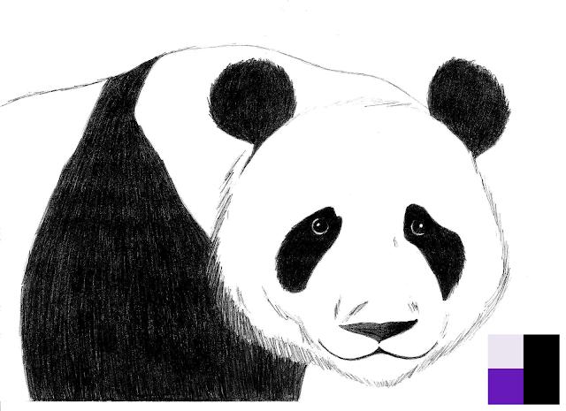 Urso Panda (Placcido)