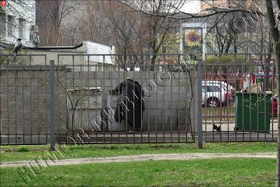Минск, столица Беларуси. Счастливая, обеспеченная старость
