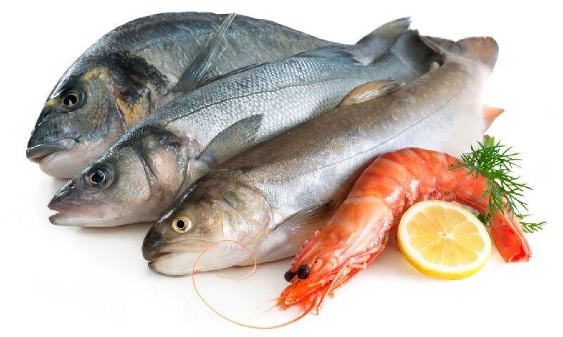 kandungan gizi ikan laut segar
