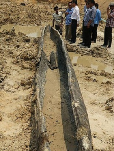 Wooden boat from the early 13th century found at Angkor Wat