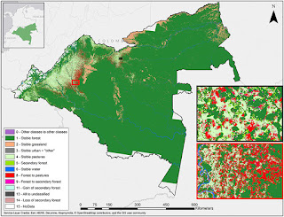 Satellite images show a rainforest being deforested (Credit: Getty Images) Click to Enlarge.