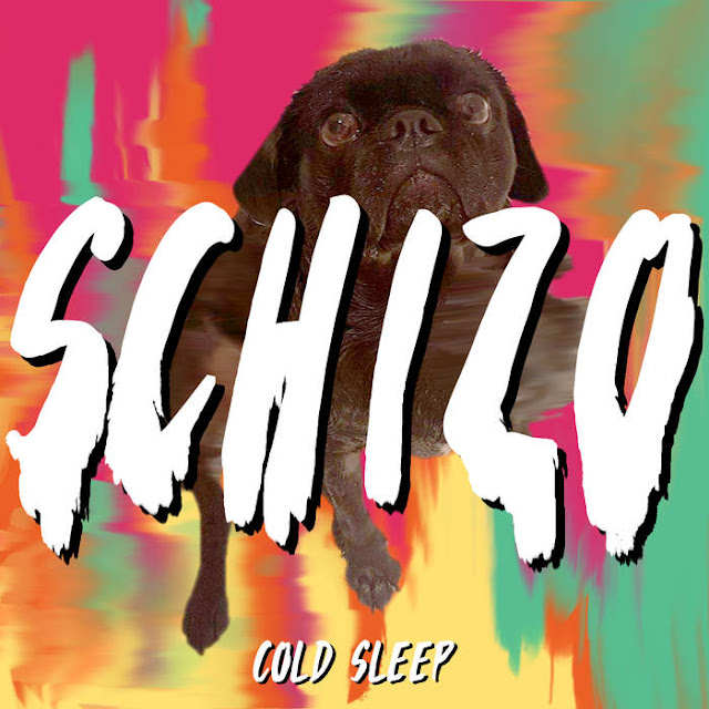 Cold Sleep - Schizo (Single) (2018)