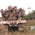 Esteliano pierde la vida por un tronco de madera.
