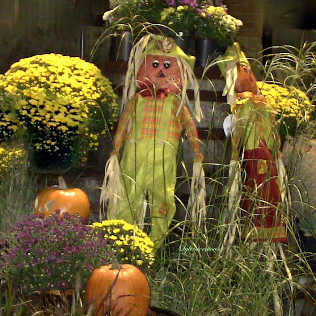 Fall Harvest Displays