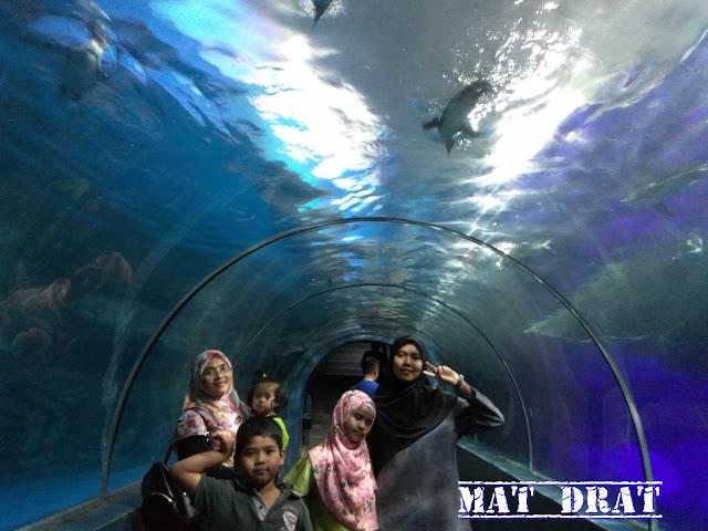 Underwater World Langkawi Tempat Menarik di Langkawi