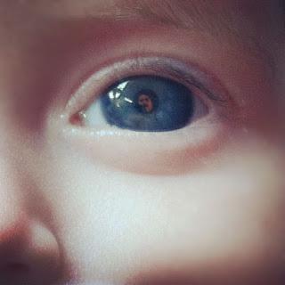 Mi imagen reflejada en la pupila de mi pequeña Leia, con apenas 2 meses.