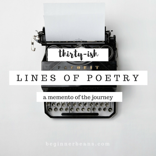 Thirty-ish Lines of Poetry | a memento of the journey