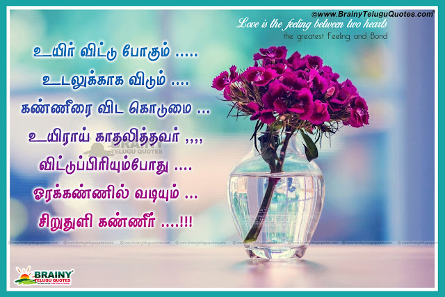Here is Tamil Latest Love Quotations wallpapers, Best Tamil Love Poems, New Love Poems  in Tamil font, Best Tamil Lover Quotations, Love Letters in Tamil, best Tamil Love Greetings online