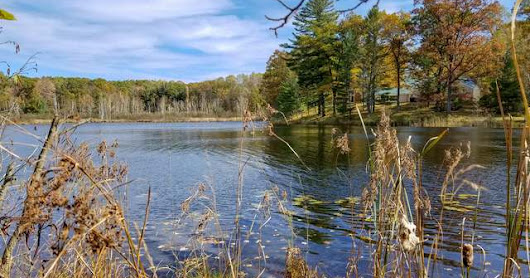 White Birch Lake Waterfront Lot for Sale!! Lot 1379 Teaberry Lane, Farwell