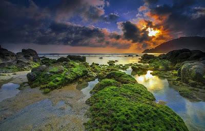 objek wisata pantai wedi ombo gunung kidul yogyakarta