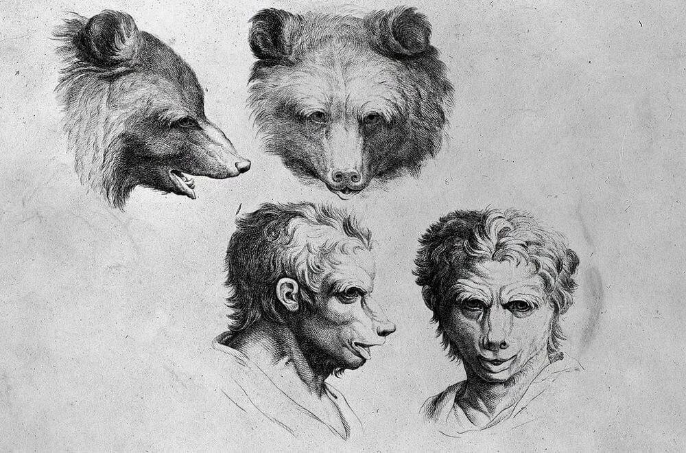 03-Grizzly-Bear-Animal-Transformations-Drawings-from-the-1600s-www-designstack-co
