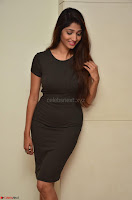 Priya Vadlamani super cute in tight brown dress at Stone Media Films production No 1 movie announcement 003.jpg
