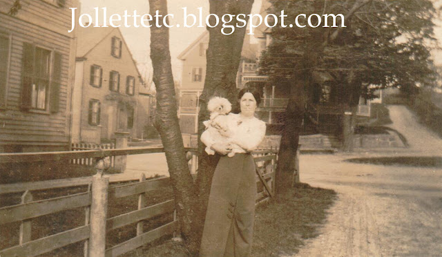 Woman and Poodle 1915 relative of Mary Theresa Sheehan Killeen Walsh  https://jollettetc.blogspot.com